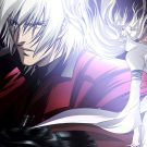 65. Devil May Cry (11)
